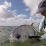 2020 - Jack Salisbury Releasing a nice Permit. Jack has a Flats Slam - Bonefish,Tarpon and Permit.